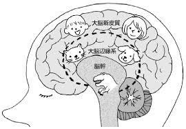 images[1].jpg